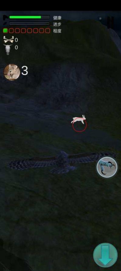 猫头鹰狩猎之旅