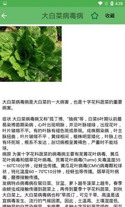 农业病虫害专家诊断