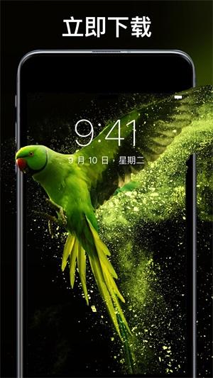 主题刘海壁纸手机软件