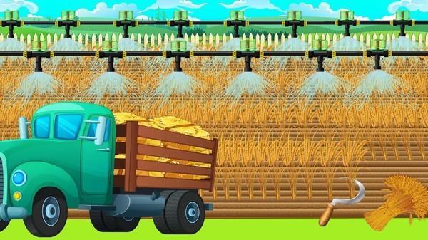 乡村农场比赛